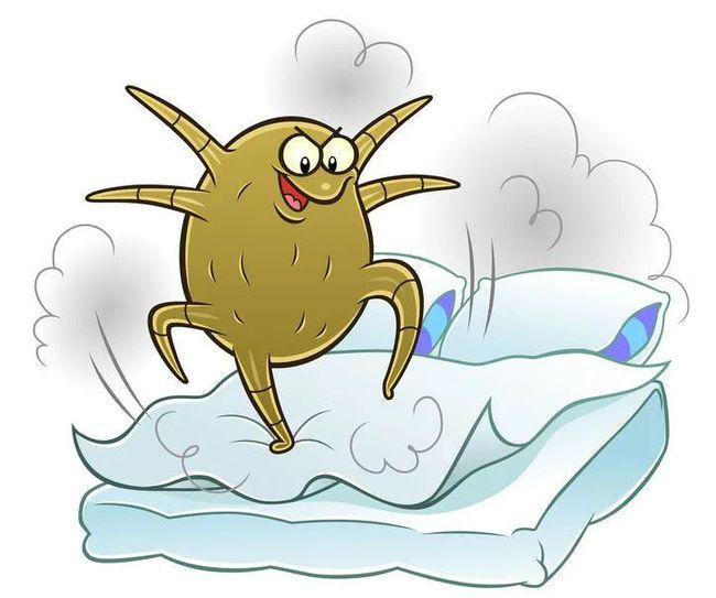 ダニのアレルギー対策や原因は?布団で寝てるだけでアレルギー改善ができる!?
